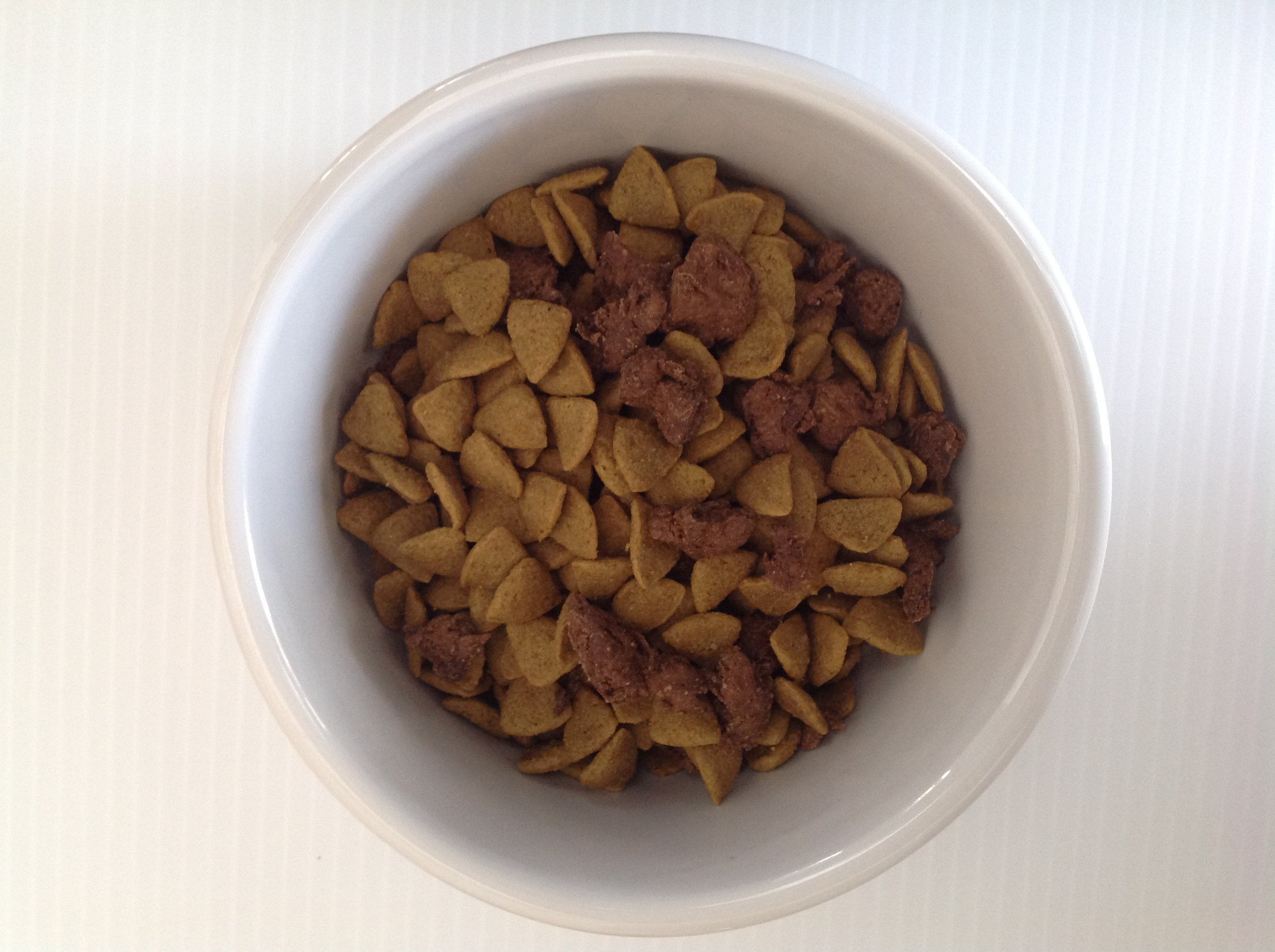 Is a Raw Pet Food Diet Right for Your Pet