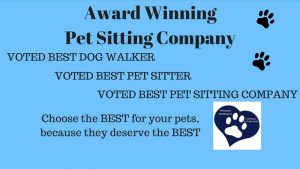 Professional Pet Sitting Etc. VOTED by YOU as BEST PET SITTER and BEST DOG WALKER