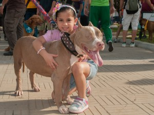 Kids And Dogs Safety Professional Pet Sitting Etc